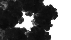 Muchos flujos, nubes negras o humo, tinta inyectan se aísla en blanco en la cámara lenta Torsiones negras del tinte en agua inky almacen de video