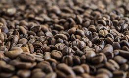 Muchos granos de café Foto de archivo libre de regalías