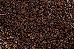 Muchos granos de café Imagenes de archivo
