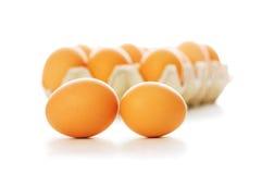 Muchos huevos aislados Imagen de archivo
