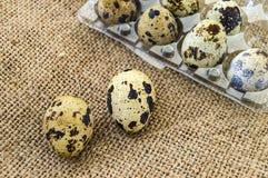 Muchos huevos de codornices en un piso de madera muchos huevos de codornices en el bolso de lino en un piso de madera, huevos de  Imagen de archivo libre de regalías
