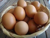 Muchos huevos del pollo en la cesta Fotos de archivo libres de regalías