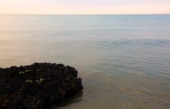 muchos mejillones en el mar imagen de archivo libre de regalías