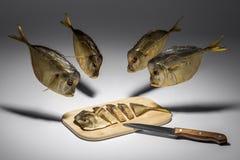 muchos pescan cerca de tablero con Vomero Foto de archivo libre de regalías