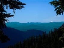 Muchos picos Imagen de archivo