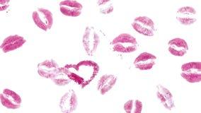 Muchos rastros de lápiz labial rosado almacen de video