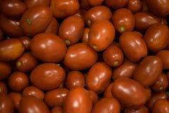 Muchos tomates fotografía de archivo