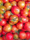 Muchos tomates maduros rojos brillantes en una cesta foto de archivo