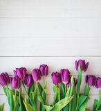 Muchos tulipanes púrpuras en la tabla de madera Foto de archivo libre de regalías