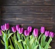 Muchos tulipanes púrpuras en la tabla de madera Imágenes de archivo libres de regalías