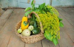 Muchos vegatables orgánicos, calabacín y verdes en hogar del jardinero del piso, durante tiempo de cosecha del otoño Imágenes de archivo libres de regalías