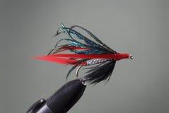 muchy połowów Zdjęcie Royalty Free
