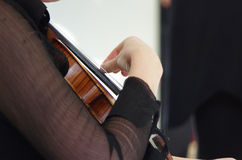 Mucis classiques d'un concert Photo libre de droits