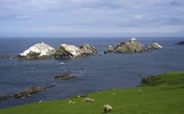 Muckle Flugga som är nordlig mest punkt av de brittiska öarna royaltyfria foton