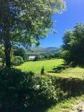 Muckross обрабатывает землю, Killarney, Керри co, Ирландия Стоковая Фотография RF
