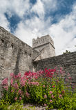 Muckross Abbey in the ring of kerry Royalty Free Stock Images
