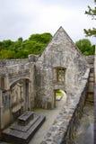 Muckross abbotskloster i Irland Arkivfoto
