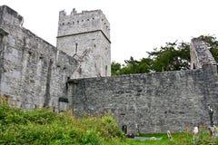 Muckross abbotskloster, Killarney, Irland Royaltyfri Fotografi