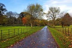 Muckross Estate. Autumn at Muckross Estate,Killarney, Co.Kerry, Ireland Stock Images