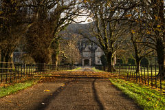 Muckross House. Alley At Sunset,Killarney National Park,Ireland,EU Royalty Free Stock Image