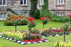 Rose garden at the Muckross House, Killarney, Ireland. Muckross House, County Kerry, Ireland - is a Tudor style mansion built in 1843 located on the small Royalty Free Stock Photos
