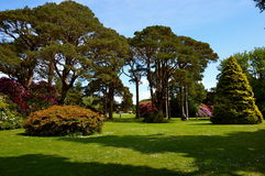 Muckross House in Killarney. National park Royalty Free Stock Image