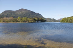 Muckross Lake near Killarney, County Kerry Royalty Free Stock Image