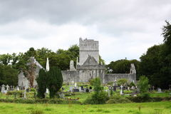 Mucross Abbey, Killarney Royalty Free Stock Image