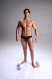 Mucsular  Man Workout Royalty Free Stock Photos