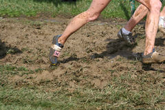 Mud stock images