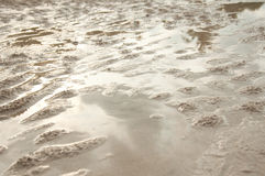 Mud. Near the sea in Thailand royalty free stock photos