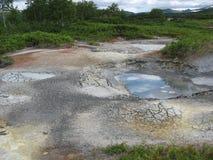mud Royaltyfri Fotografi