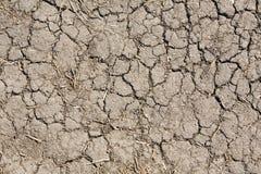 mud Arkivfoto