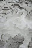 mud Arkivbilder