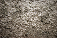 Free Mud Stock Images - 5676184