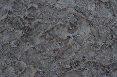 mud Fotografering för Bildbyråer