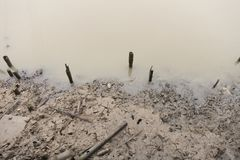 Mud appear at low tide along river.  Royalty Free Stock Images