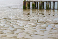 Mud appear at low tide Stock Photos