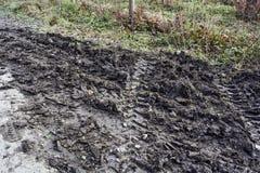 Mud on the asphalt Stock Image