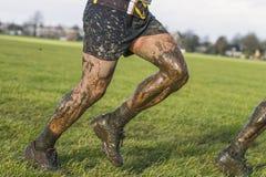 Mud Stock Image