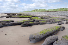 Mud banks and big dunes at Beal beach royalty free stock photography