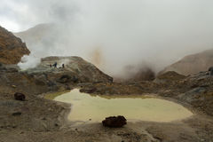 Mud bath in crater of Mutnovsky volcano. Stock Photography