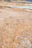 Mud beach of Dead sea Stock Photography
