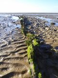 Mud beach at low tide. The mud beach at low tide at Burnham-on-Sea in Somerset, England stock photo