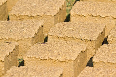 Mud bricks drying on the sun, Nepal Stock Photos