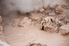 Mud Bubble. I believe this was in the area of the mud volcano at Yellowstone National Park. The mud was boiling and bubbling up as the heat and steam rose from Royalty Free Stock Image