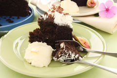 Mud Cake Royalty Free Stock Image