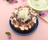 Mud Cake Stock Images