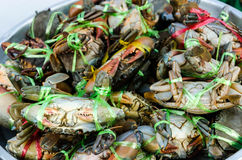 Mud Crabs in a Market Royalty Free Stock Image