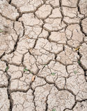 Mud crack background Stock Photos